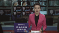 市人大常委会副主任杨庆育来津督导选举工作