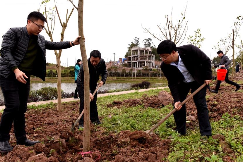 区领导义务植树 为建设山清水秀美丽江津再添新绿