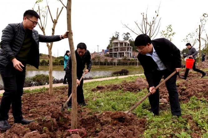 区领导义务植树 为建设山清水秀美丽江津再添新绿1.jpg