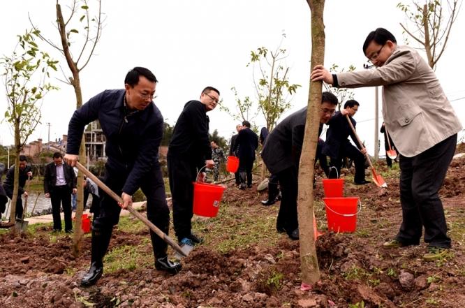 区领导义务植树 为建设山清水秀美丽江津再添新绿2.jpg