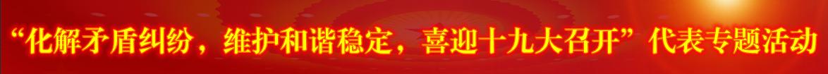 """""""化解矛盾纠纷,维护和谐稳定,喜迎十九大召开""""代表专题活动"""